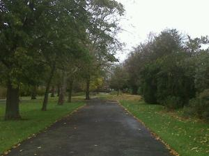 photo of park in autumn